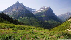mountain-pasture_00450519
